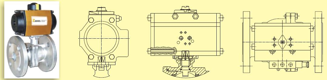 ZIPSON'S 207S 2-piece flanged ball valve detailed drawing
