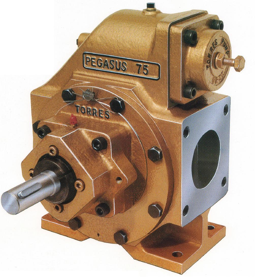 The Pegasus 75 an all purpose pump